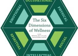 6-Dimensions-of-Wellness-2878.jpg